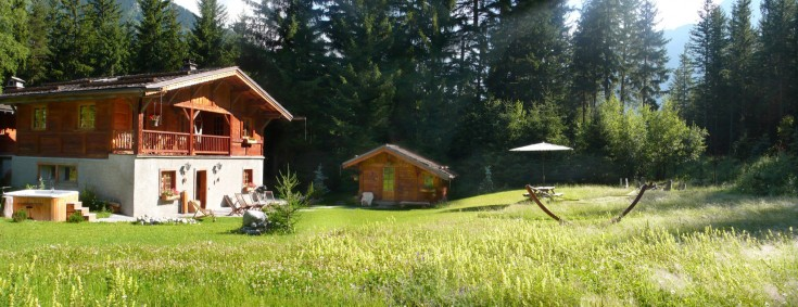 Garden panorama in summer