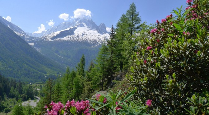 The Aiguille Verte, France's second highest mountain, seen from the walk towards Lac Blanc